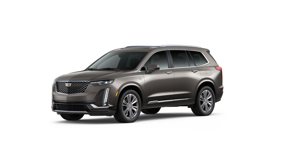 XT6 Dark mocha metallic jellybean